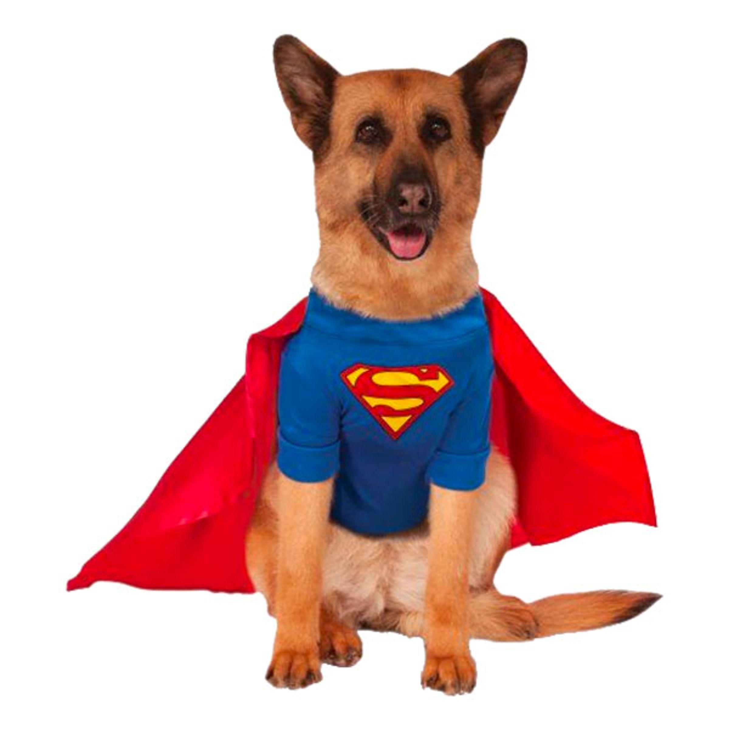 Superman Hund Maskeraddräkt - XX-Large